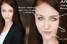 Lightroom Brushes: Portrait Adjustment Brush Mega-pack