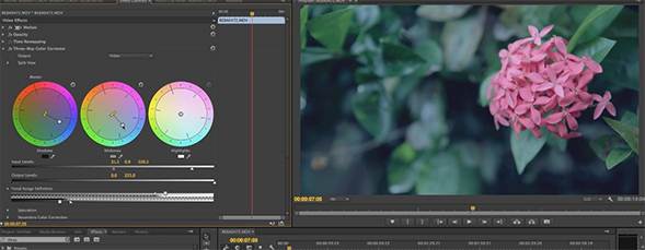 Color Correction in Premiere Pro CS6