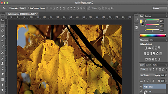 Adobe Photoshop CC: Generate Tool Learning the Basics