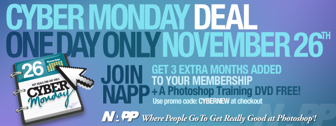 Special Cyber Monday Offer From NAPP
