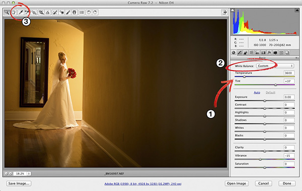 Setting Your White Balance in Adobe Photoshop Camera Raw