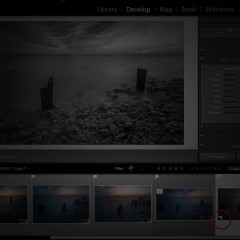 Lightroom Q&A: Snapshots Vs. Virtual Copies