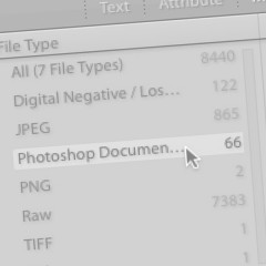 Get rid of those extra TIFFs & PSDs in your Lightroom Library fast!