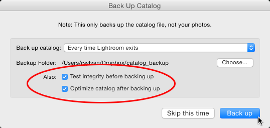 Benefits of having Lightroom backup the catalog.