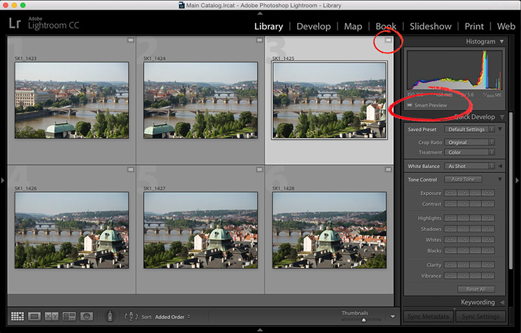 how to create smart previews in lightroom