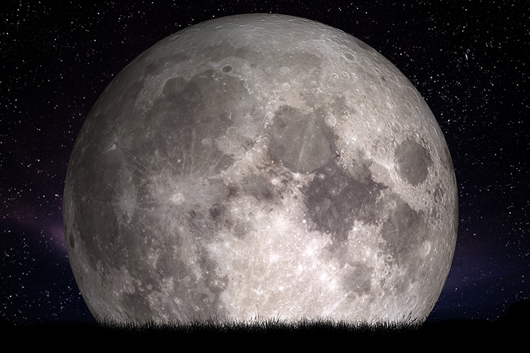 Full moon at night. Grass in the foreground. Perfect for background, copy-space. Elements of this image furnished by NASA