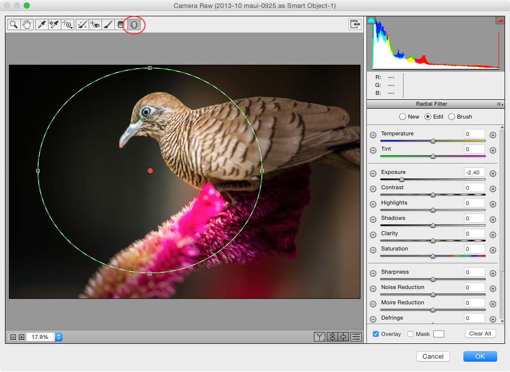 Seven Reasons to Use the Camera Raw Filter in Adobe Photoshop CC ...