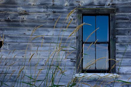 windowsm.jpg