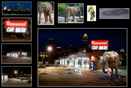 elephantssm.jpg