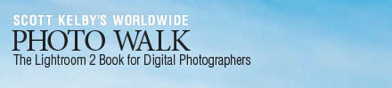 pswalkbar.jpg