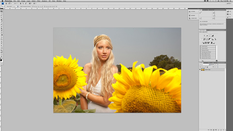 SunFlower_01sm