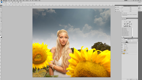 SunFlower_03sm