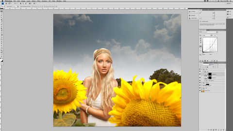 SunFlower_06sm