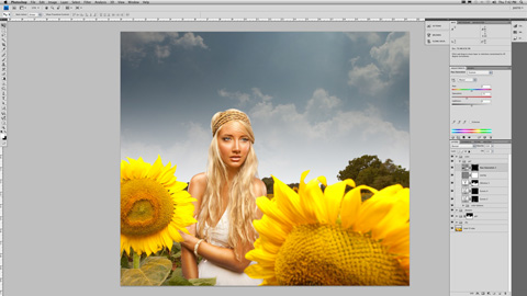 SunFlower_10sm
