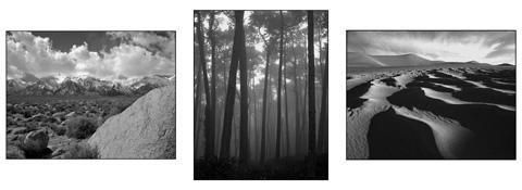 black&white1sm