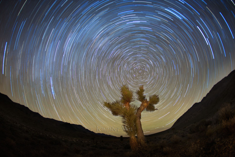 20151108_1_Death_Valley_212_StarTails_TIF_1